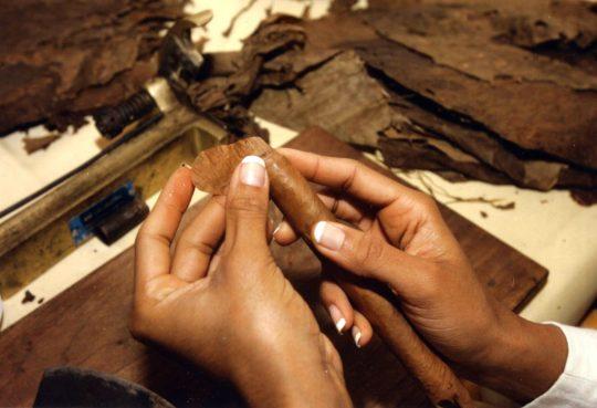 Die Kunst des Tabakrollens